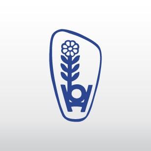 Rosenduftthymian   Pflanze