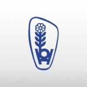 Rosa Ysop  Pflanze